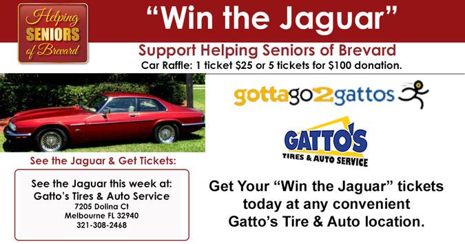 Win the Jaguar - Gatto's Dolin Court