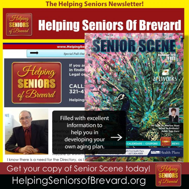 November 2018 Helping Seniors Newsletter