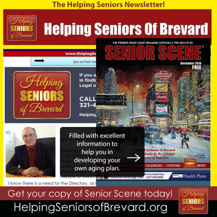 Helping Seniors Newsletter - December 2018