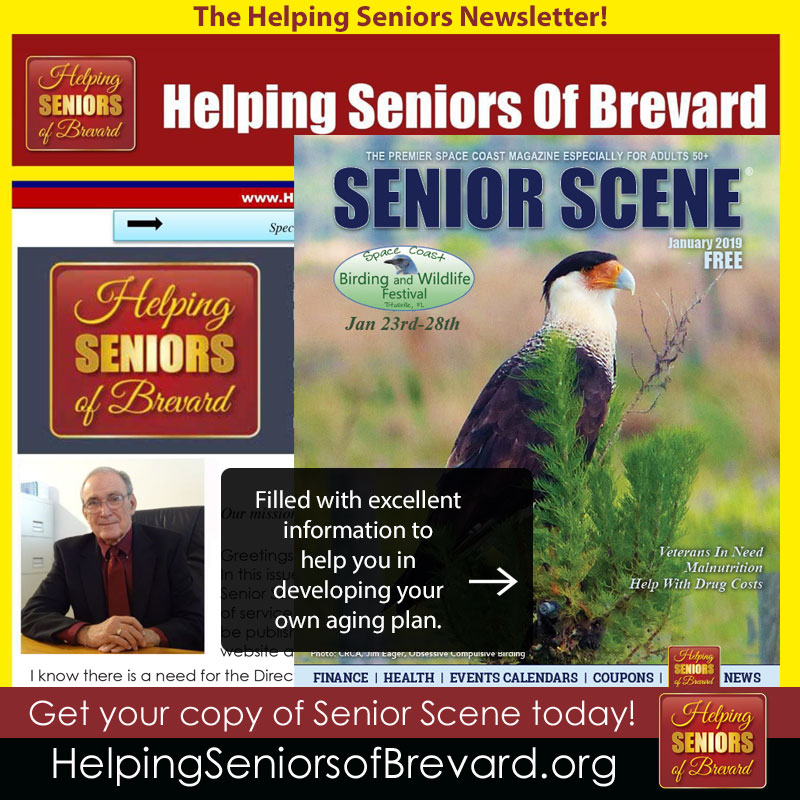 Helping Seniors January 2019 Newsletter